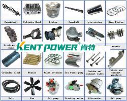 Acutator/pignon de pompe à huile/courroie alternateur/contacteur magnétique/carter de turbocompresseur/générateur de pièces du ventilateur du moteur