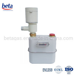 Industrielles frankiertes Gas-Messinstrument Zg25 (S)