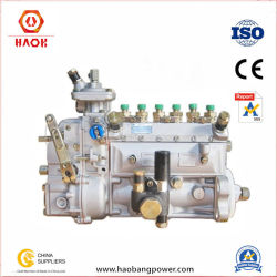 Dieselmotor zerteilt Kraftstoffeinspritzung-Pumpe für Deutz (FL912/913)