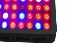 실내 플랜트의 밝기 300W 600W 1000W LED 증감 조명 성장