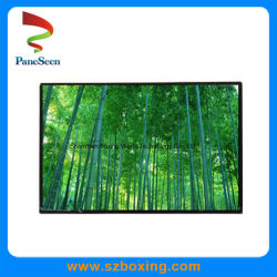 10.1-Inch TFT LCD mit Auflösung 1280 * 800, IPS