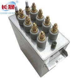 Rfm1.25-3000-1S 중간 주파수 전기 콘덴서