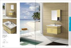 Governo di stanza da bagno caldo dell'acciaio inossidabile del punto di vendita (T-9411)