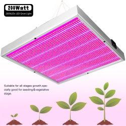 Bon marché De qualité supérieure 200W panneau LED de tomates de serre grandir la lumière