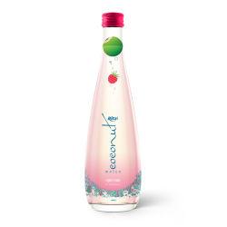 500ml Water van de Kokosnoot van de Fles van het Glas van Nice het Natuurlijke met het Fruit van fabrikant-OEM van sap-Vietnam van de Framboos sap-van Rita Brand