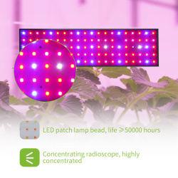 Comprar Alta calidad de 300 vatios de amplio espectro de las luces LED de 5 pies crecen Samsung 301b Fabricado en EE.UU.