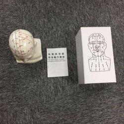 Chefe da acupuntura ideal do modelo de material pedagógico.