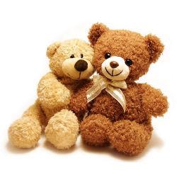 2018 de Nieuwe Teddybeer van de Dag van de Valentijnskaarten van het Stuk speelgoed van het Ontwerp Zachte voor Gift