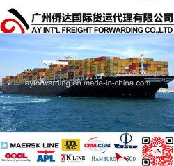 China-Versandbehälter-Seefracht von Xiamen/Shenzhen/Guangzhou/Shanghai nach Großbritannien