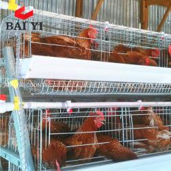 Gabbie di strato del pollo di vendita dell'azienda avicola di Dar es Salaam Tanzania migliori