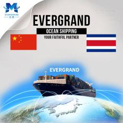 De professionele Overzeese Verschepende Dienst van de Vracht van China aan Costa Rica/Puerto Caldera/San Jose/Puerto Limon