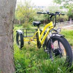 [500و] كهربائيّة يحمّل درّاجة ثلاثية كهربائيّة مع دوّاسة