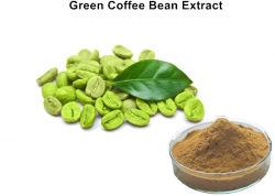 45% Gesamtchlorogensäure-grünes Kaffeebohne-Auszug-Puder