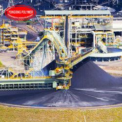 Le traitement des minéraux Produits chimiques pour l'or anioniques agent de floculation, de charbon, le diamant, l'utilisation