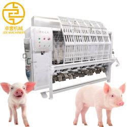 Élimination des poils de porc en acier inoxydable de la machine de l'équipement d'abattage de porcs Porcs Machine Depilating