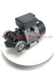AC 220V 1100W la pompe à ailettes électrique pour le transfert de carburant diesel