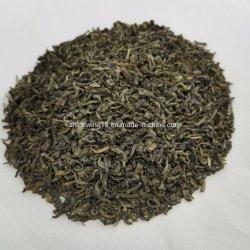Chinesischer grüner Chunmee Tee 41022 Meicha