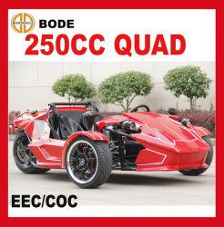Neues 250cc ATV Vierradantriebwagen-Fahrrad für Verkauf (MC-369)