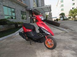 50cc/100cc/125cc EEC 고속 합금 바퀴 가스 모터 스쿠터 (SL100T-A3)