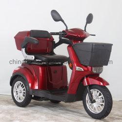 E-autoped, e-Fiets, de Elektrische Fiets van de Autoped/Driewieler, de Autoped van de Mobiliteit, Gehandicapte Autoped