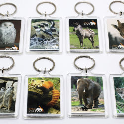 도매 싼 주문 형식 박람회 여행 기념품 선전용 선물을%s 플라스틱 명확한 공백 렌즈 모양 사진 3D에 의하여 인쇄되는 전망 아크릴 Keychain