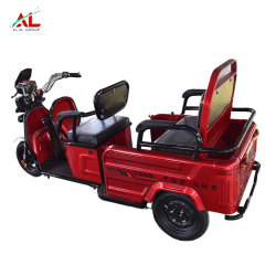 Triciclos eléctricos Al-Xk Scooter eléctrico de 3000W 48V abierto triciclo triciclo eléctrico de piezas de repuesto