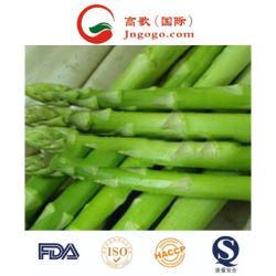 새로운 작물 최고 질 IQF에 의하여 어는 아스파라거스 /White 아스파라거스 및 동결된 야채