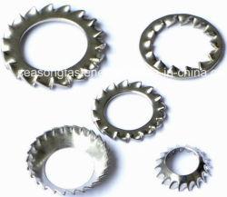Ranella di bloccaggio del dente dell'acciaio inossidabile/rondella seghettata (DIN6798)