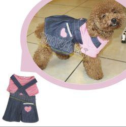 [جن] كلب ملابس ثوب, كلب طبقة ([يج73515])