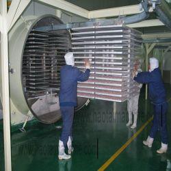 Comida de vácuo Dryer-Fruit congelar a liofilização de equipamento para processamento de produtos alimentares