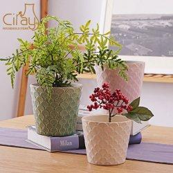 De lichtgroene Pot van de Bloem van de Orchidee met In reliëf gemaakt Shell Patroon