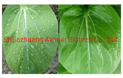 Auxiliaires de pesticides, mixte Utilisation de pesticides, silicone hautement efficace