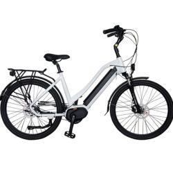 الصين مصنع إمداد تموين [كمّوم] [شرلدرن] [موونتينت] درّاجة كهربائيّة [لوو بريس]