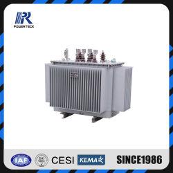 Oil-Immersed Media Tensión con transformadores de distribución de la capacidad kVA.