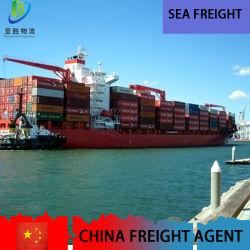 Крупнейшие мировые компании из Китая в мире логистических услуг экспедитора/экспедитора/экспедитор DDP/ДД