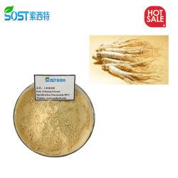 توفر طبيعة العلم والتقنية (SST) 100% من المستخلص الأساسي من جذور الفتان الأحمر الطبيعي نوجينسنغ