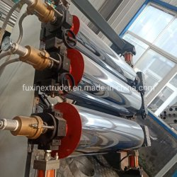 Competitive Price Pet Single Layer/Multi-Layer Sheet Extrusion Line/Produktionslinie