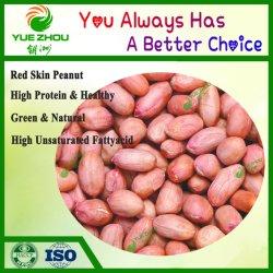 Zubehör-rohes neues Getreide-neue runde rote Haut-Erdnuss-Kerne
