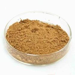 Uittreksel Ursolic Zure CAS 77-52-1 van het Blad Loquat van 100% het Natuurlijke