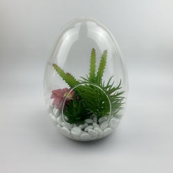 요전같은 정원 장식 계란 모양 명확한 유리제 화병 Terrariums