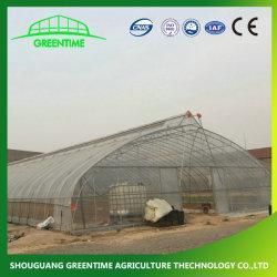 Коммерческие/сельскохозяйственных клубничный туннель один Span пленки выбросов парниковых газов с помощью системы охлаждения/орошение/отопление/тени Net системы