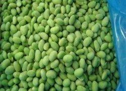 Haut de la qualité surgelés IQF Les noyaux de soja vert/Edamame