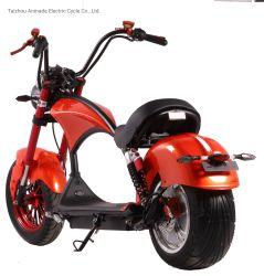 Halley elektrischer Roller mit Motor 1500W