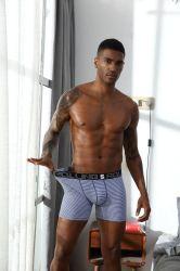 Personalizzare la biancheria intima sexy popolare del Mens del cotone di Shorts del pugile del Mens della biancheria intima degli uomini