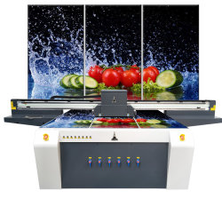 Стекло Wallpanels Splashbacks цифровой печатной машины широкоформатные УФ-принтер