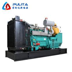 Generator van het Biogas/van het Gas van Ce ISO de Gediplomeerde met Motor Cummins/Perkins voor Europa