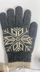 電気熱くする手袋のスキーの暖かい冬の屋外スポーツの手袋