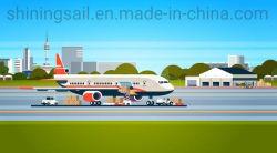 Профессиональная быстрая доставка оператора в Китае в Лос-Анджелес США