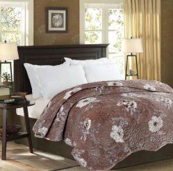 Super Soft Herbst und Winter verdickt warmen Flanell Bettlaken Gesteppte Bettdecke Druck Decke Quilt