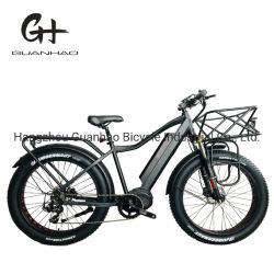 26inch Addmotor 눈 타이어 Bafang 1000W 중간 모터 E 자전거
